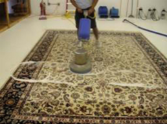 Antique Rugs. Upholstery Cleaning